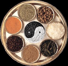 Introducci n en la cocina macrobi tica saludable de oto o for Cocina macrobiotica
