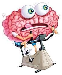 c167 Brain training: ¿El cerebro se puede entrenar?