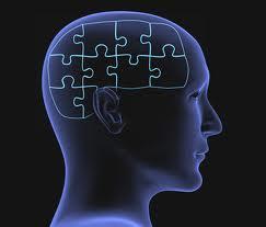 c355 Brain training: ¿El cerebro se puede entrenar?