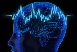 c356 Brain training: ¿El cerebro se puede entrenar?