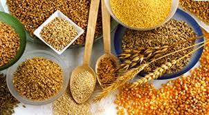 cereales1 Cereales de grano entero, una fuente de proteína, minerales y vitaminas