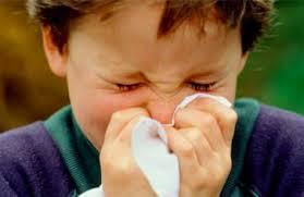 rinitis1 Lavados nasales con agua de mar para la rinitis y congestión nasal