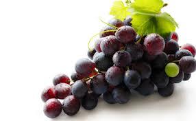 vino5 El resveratrol, el vino, las sirtuinas y su efecto antiedad