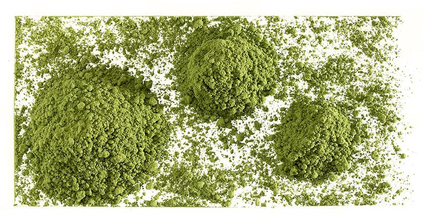 Té verde japonés Matcha