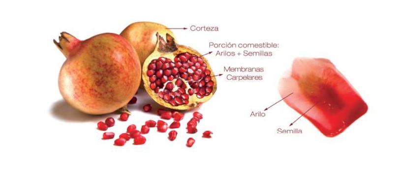 Aceite de granada, antioxidante y rica en Omega 5