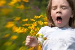 alergia3