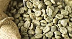 cafe verde3