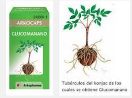 glucomanano1