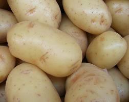 patatas23