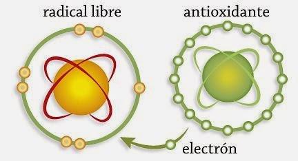 Antioxidantes y radicales libres tal para cual - Que alimentos son antioxidantes naturales ...